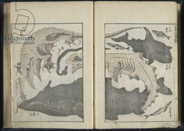 Sketchbook (woodblock print)