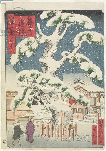Rennyo-Pine Tree at Miyanomori, 19th century (colour woodblock print)
