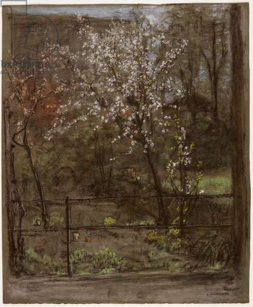 Spring Blossoms (pastel)