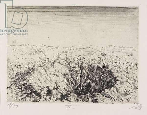 Granattrichter mit Blumen (Frühling 1916) (Grenade Trench with Flowers [Spring 1916]), plate 24 from Der Krieg (The War), 1924