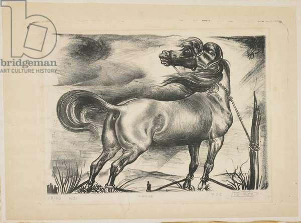 Horse, No. 1, 1932