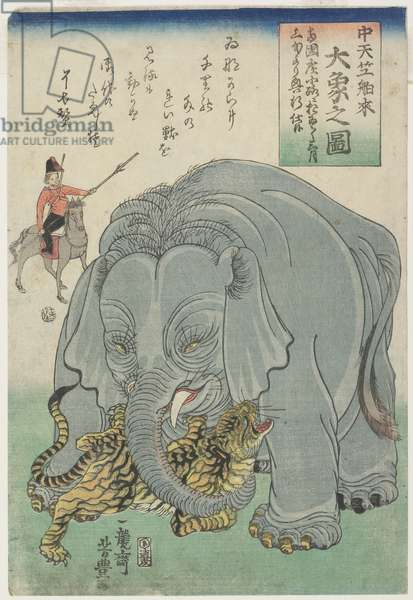 Elephant From India With Tiger, February 1863