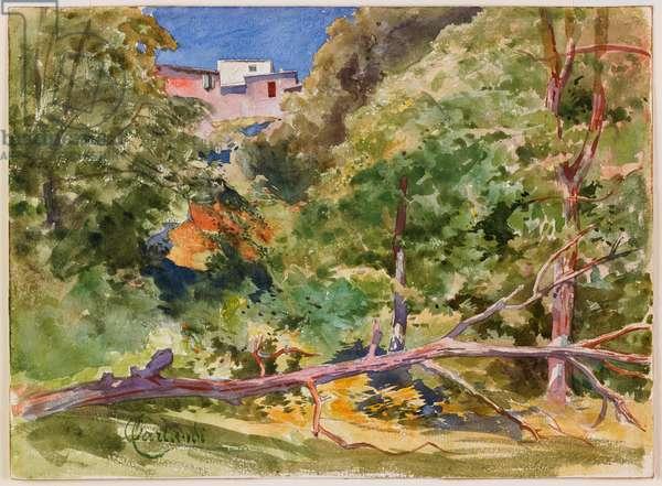 Rustic Landscape (w/c on paper)