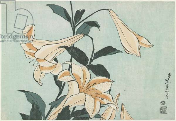 Lilies, c. 1832