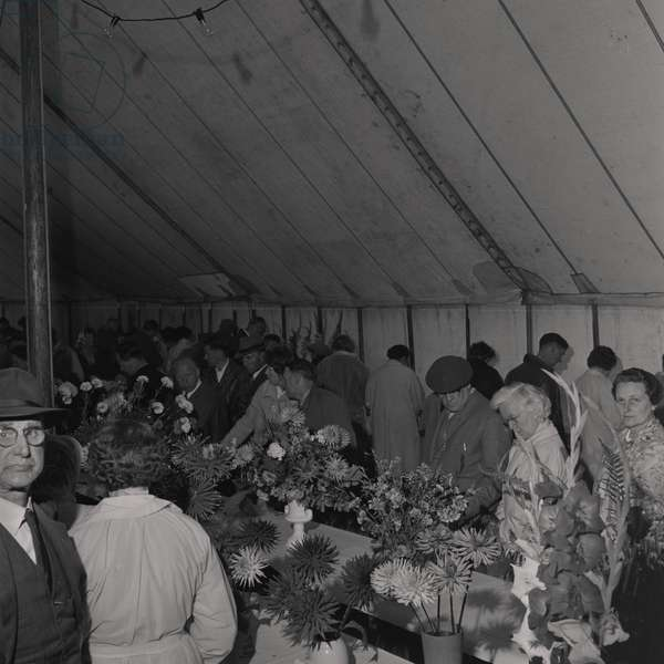 Horticultural Show, Villa Marina, August 1961 (b/w photo)