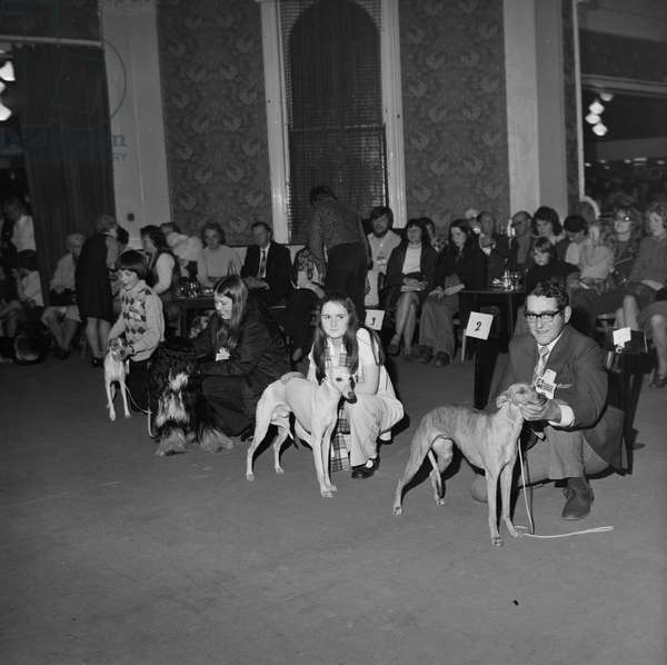 Dog Show, Villiers Hotel, May 1975 (b/w photo)