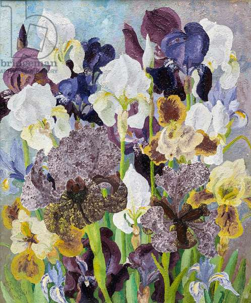 May Flowering Irises, 1935 (oil on canvas)