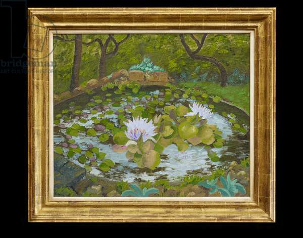 African Water Lily, Madeira, 1969 (oil on canvas)