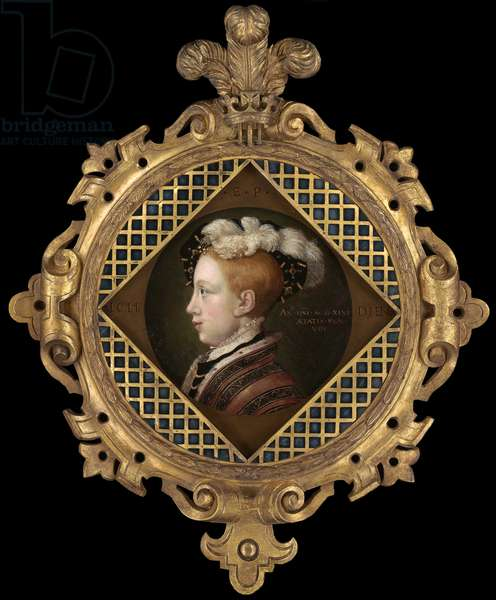 Portrait of Edward VI when Prince of Wales, late 1540s (oil on panel)