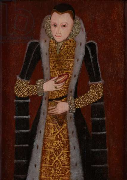 Portrait of a Young Lady, c.1590s (oil on panel)