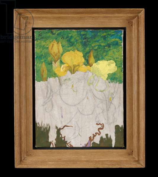 Irises, an unfinished work (oil on canvas)