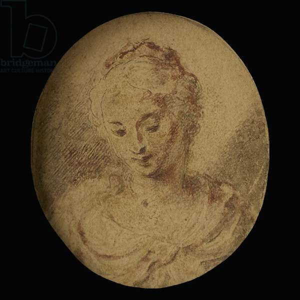 Head study of an unknown Lady, late 1590s  (pencil and wash on paper heightened with gold)