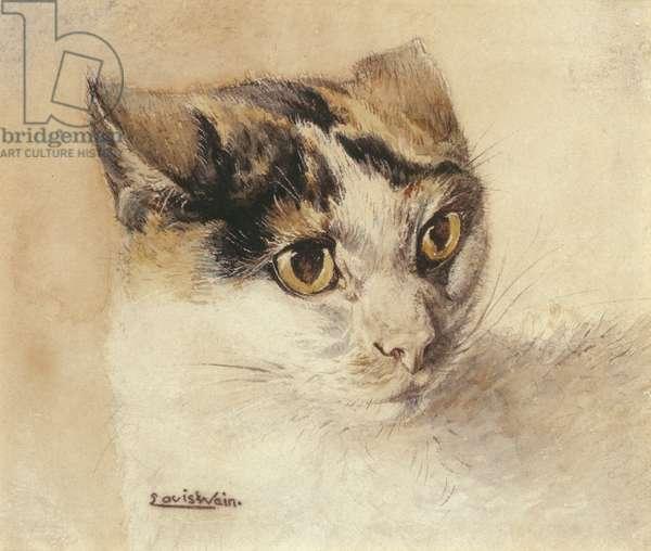 Cat Study (w/c on paper)
