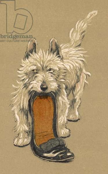 DOG WITH SLIPPER / ALDIN