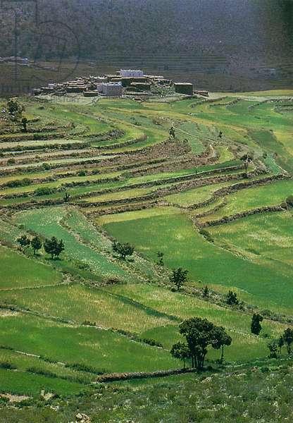 Saudi Arabia - Cultivated Fields Near As-Sudah