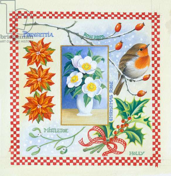 Christmas Time, robin and flowers