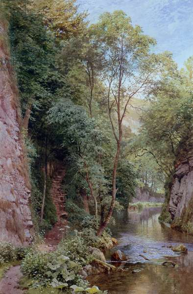 Landscape scene with wood and river