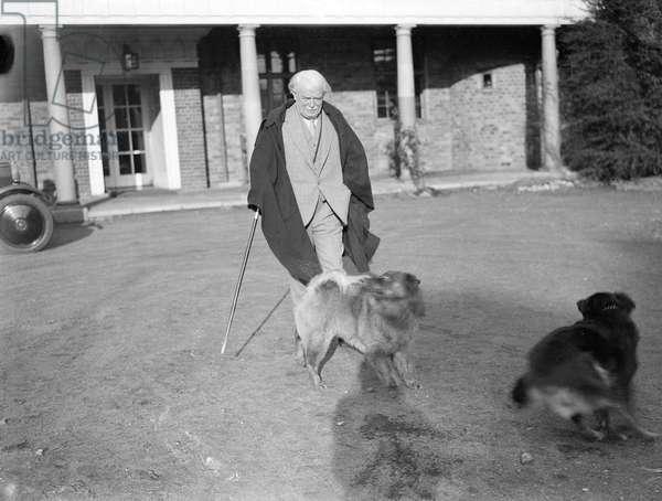 LLOYD GEORGE & HIS DOG