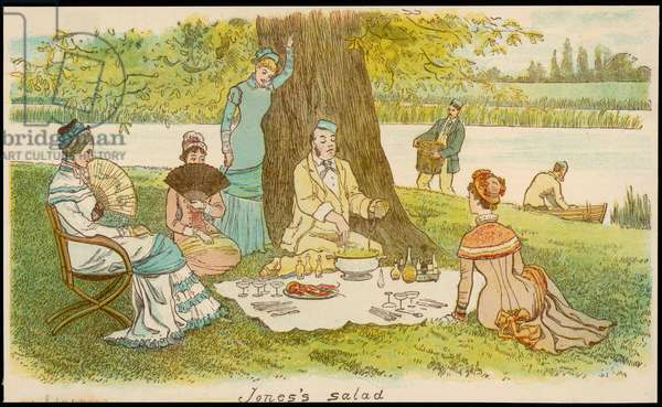 A group of young ladies and gentlemen on a picnic by a river , 1879 (engraving)