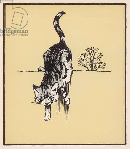 GREY CAT ON WALL ALDIN