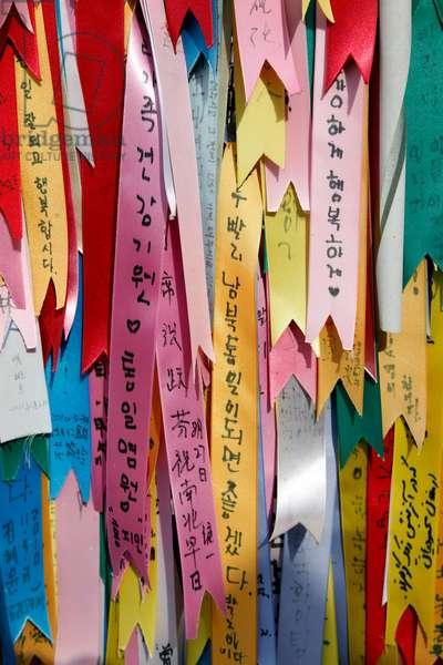 DMZ, De-militarised Zone, South Korea