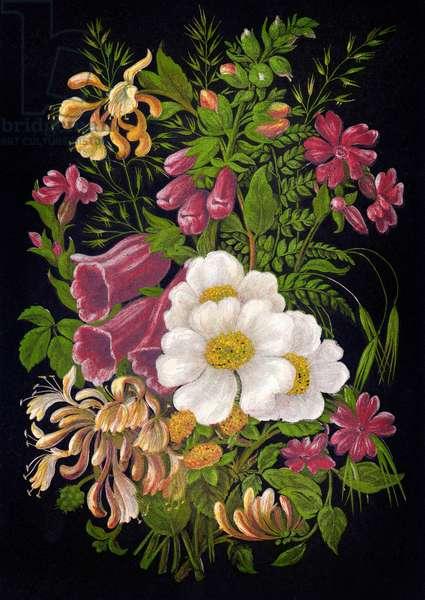 Fleurs d'ete 1880