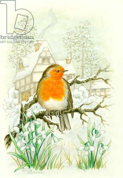 Robin with snowdrops and house