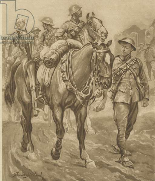 Wounded Chum - World War One horses
