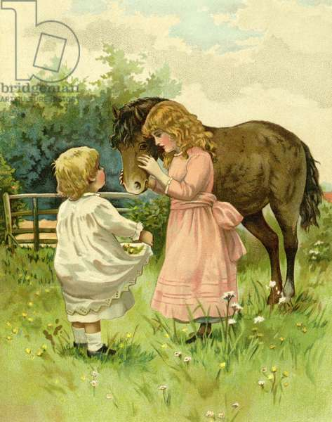 Children and their pony