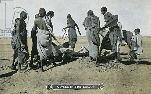 Sudan - A Well - Drawing water
