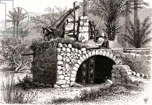 Water Wheel in Middle East