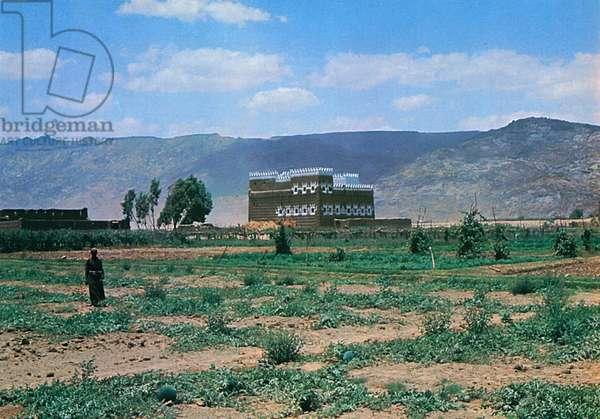 Saudi Arabia - A Farm in Wadi Najran