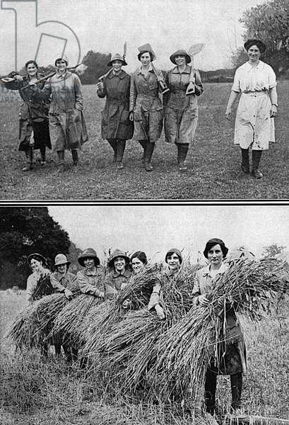 Land Girls bringing in the harvest