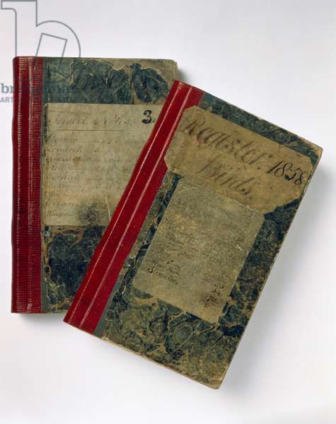 The notebooks of Wallace