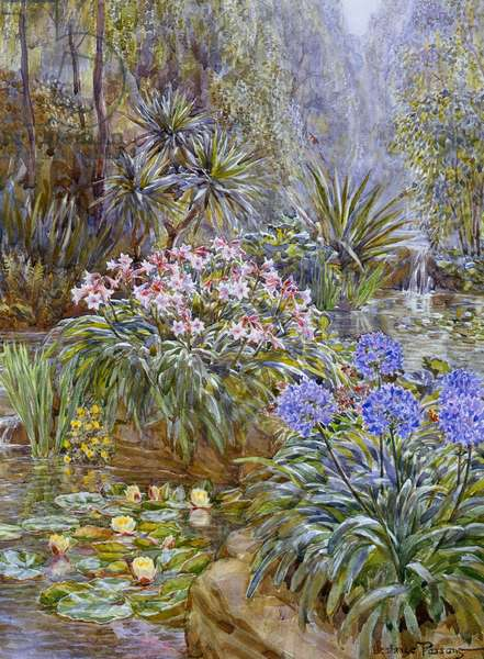 The Water Garden Ð with water lilies etc