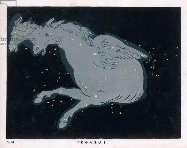 BLUNT/PEGASUS/31/1849