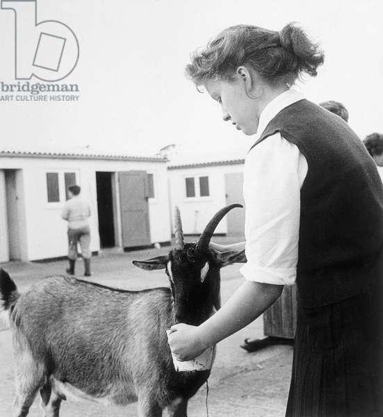 GOAT & GIRL 1950S