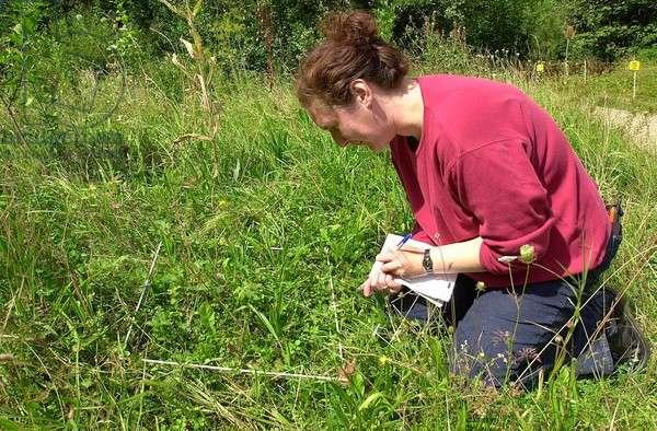 Scientist on field trip