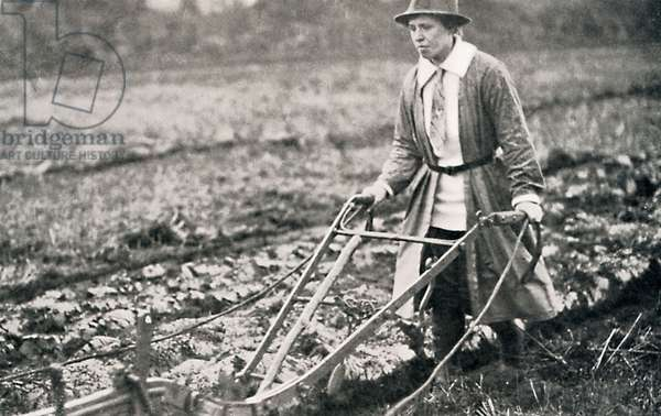 Woman ploughing a field during World War I
