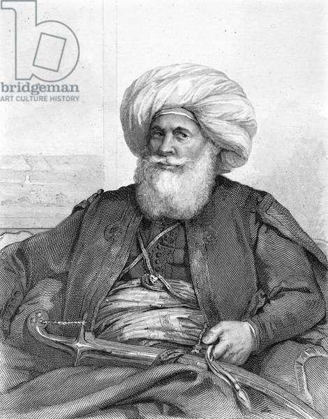 MUHAMMAD ALI, VICEROY