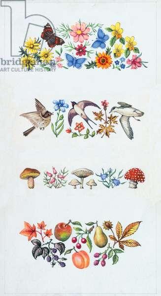 Summer Flowers, Butterflies and birds