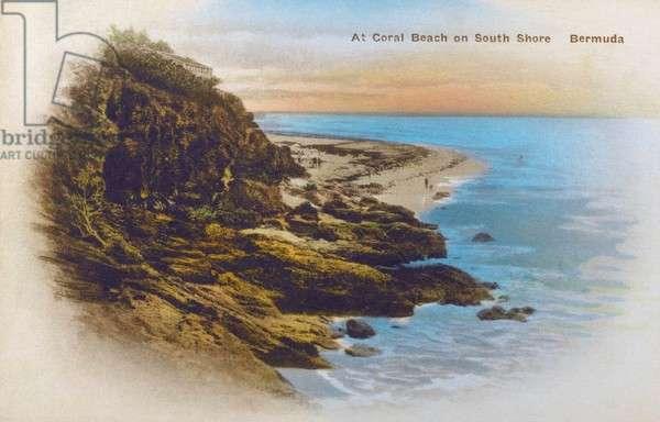 Coral Beach - South Shore, Bermuda - Western Atlantic