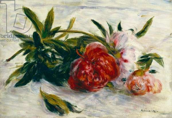 Still Life with Peonies on a White Cloth