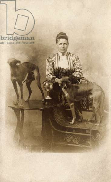Woman with two greyhounds