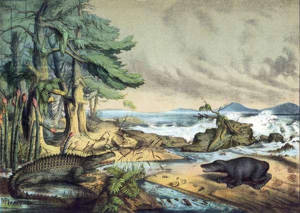 TRIASSIC ANIMALS/PLANTS