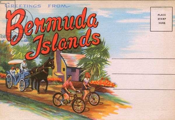 Greetings from Bermuda Islands