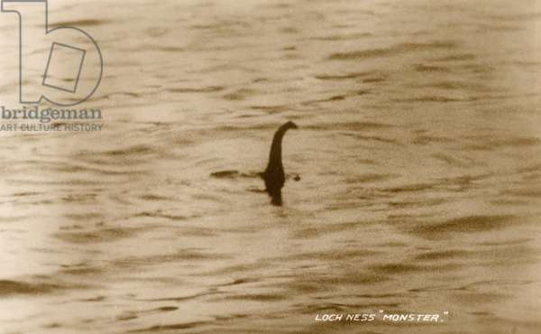 Photographic evidence of the Loch Ness Monster