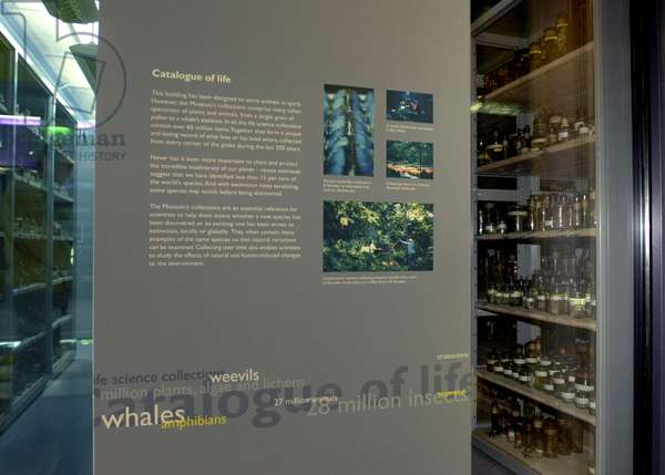 Exhibition panel on display in the Darwin Centre