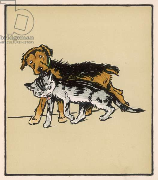 DOG AND CAT ALDIN