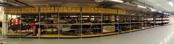 Natural History Museum storeroom